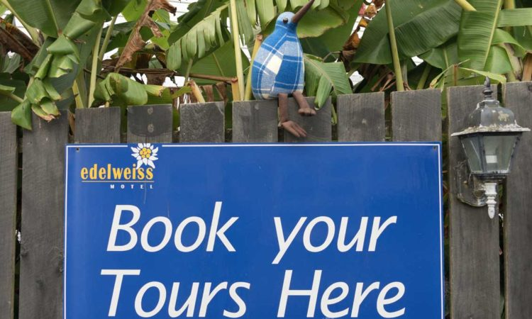 book your tours here